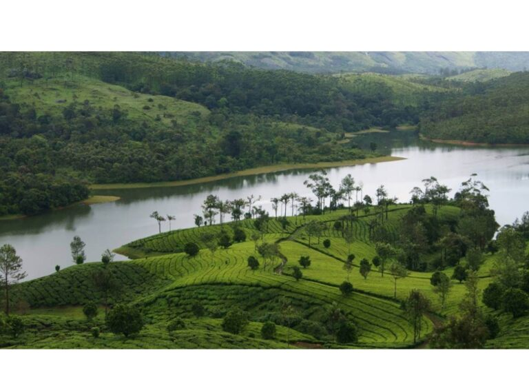 10 Picturesque Hill Stations In South India You Should Visit Next
